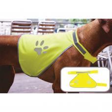 Colete de alta visibilidade para cão