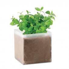 Saco com sementes de menta - Mint
